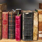 本が本棚に並んでいる